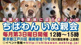 Chibawan_teiki_inuoyakai320x180_2