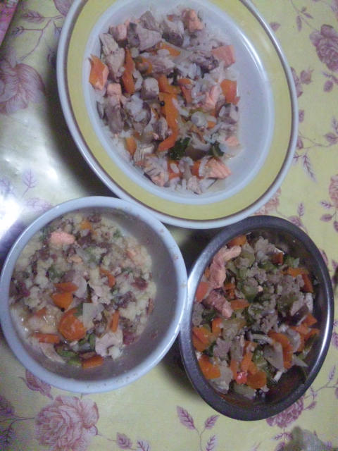 魚の手作りご飯で、やっと食べてくれた(^0^)/
